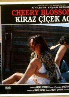 Yerli Erotik Film   HD